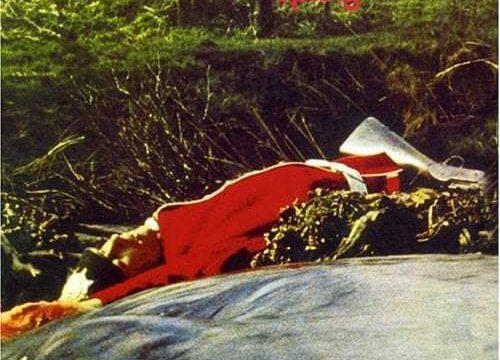 Spring (1971), la meteora